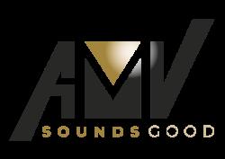 a.m.v. audiomedia